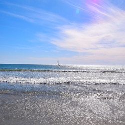 Sail Boat on Horizon