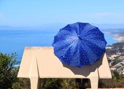 DSC_0478-umbrella-2